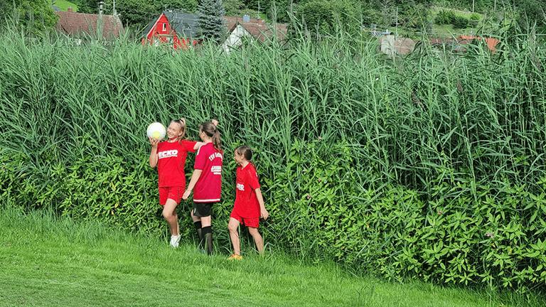 Ballfangzaun Hauptspielfeld Riedsportplatz