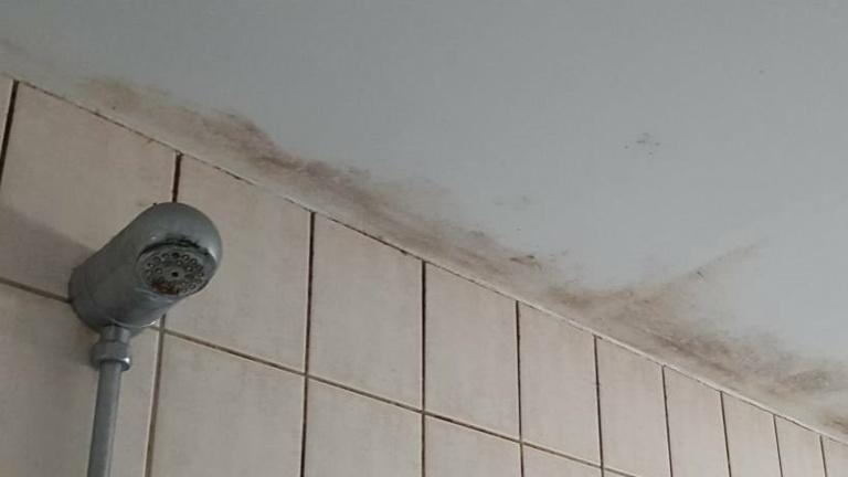 Sanierung Duschkabinen beim  SV Resse