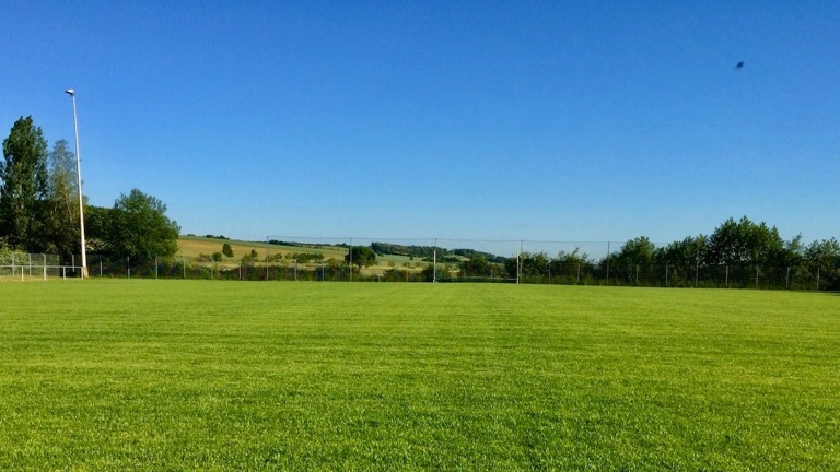 Pflege für unseren Rasenplatz