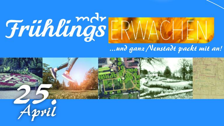 Frühlingserwachen in Neustadt (Orla)