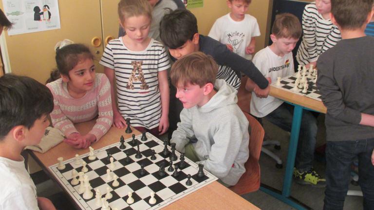 Schachbretter für kluge Köpfe