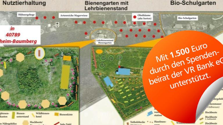 Artenvielfalt & Bienenprojekt in Monheim-B.