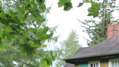 Neues Leben für ein altes Haus