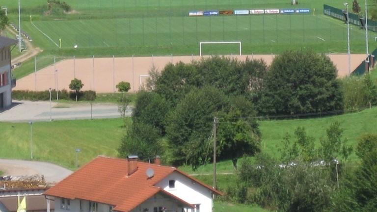 Die Zukunft spielt auf Grün - Kunstrasen für Biederbach