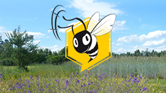 Biene als Umweltspäher