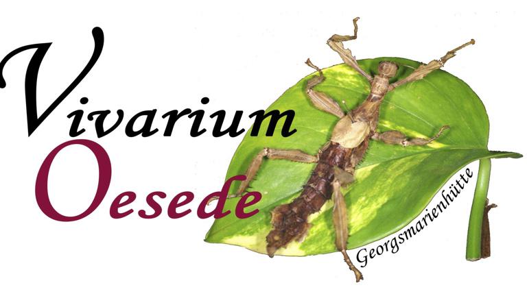 Vivarium Oesede - Neuer Raum sucht neue Technik