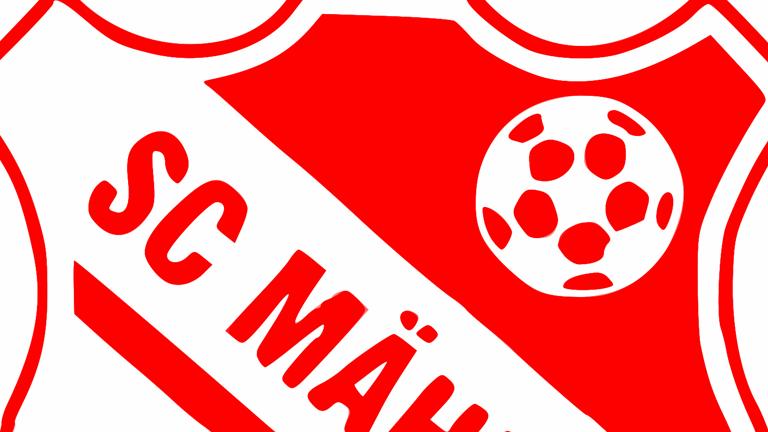 Vereinskleidung SC Mähring