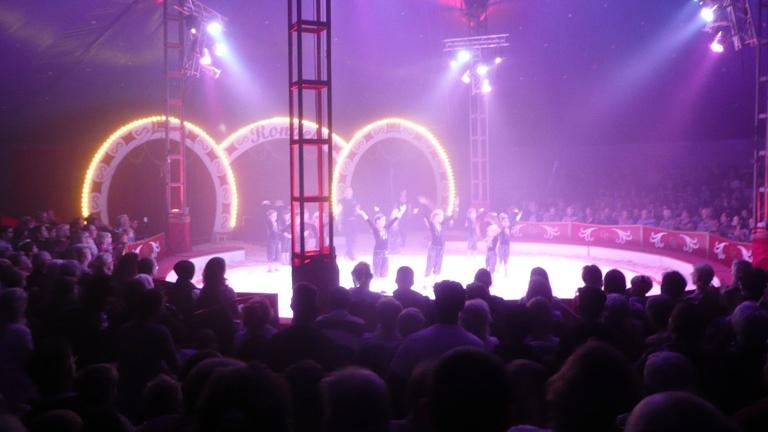 Zirkus in allen Klassen 2021