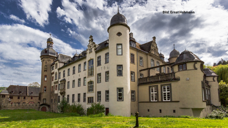 Die Dächer von Burg Namedy