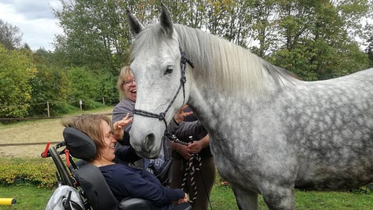 Pferdetage für sozial/gesundheitl. Beeinträchtigte