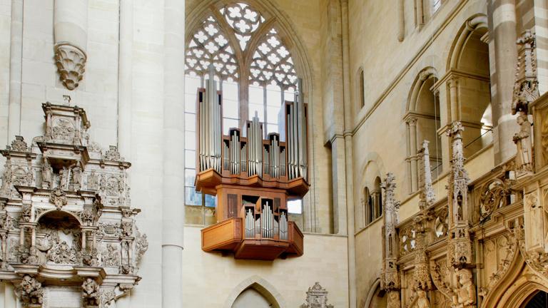 Paradiesorgelsanierung im Magdeburger Dom