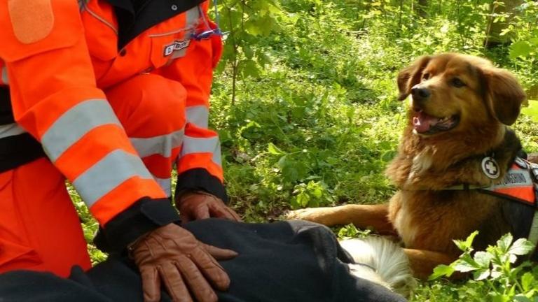 Rettungshunde Anschaffung Ausrüstung Helme