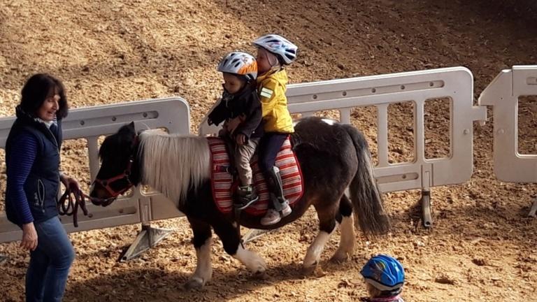 Inklusives Ponyreiten soll weiter bestehen