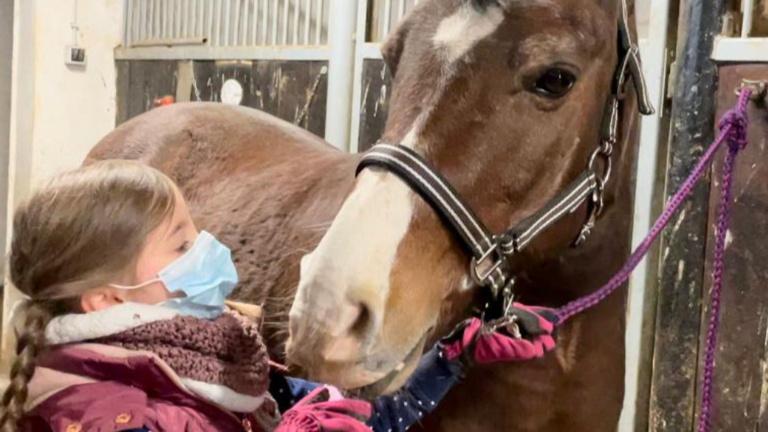 Ponys für unseren Nachwuchs