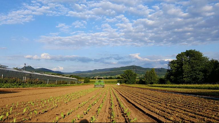 Initiativgruppe Bioregion Mittelbaden