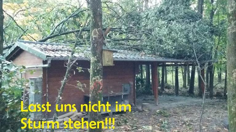 Sturmunterkunft für unseren Waldkindergarten
