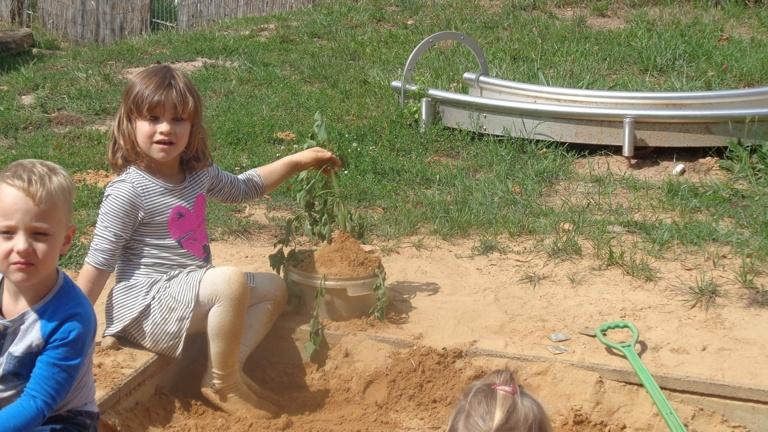 gesunder Sonnenspaß für Kinder