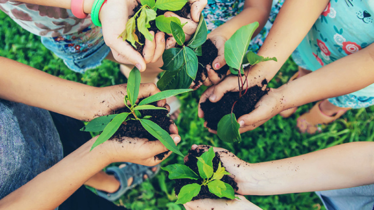 United Kids Foundations Wald