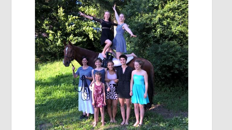 Voltigierpferd für den RFV Böblingen